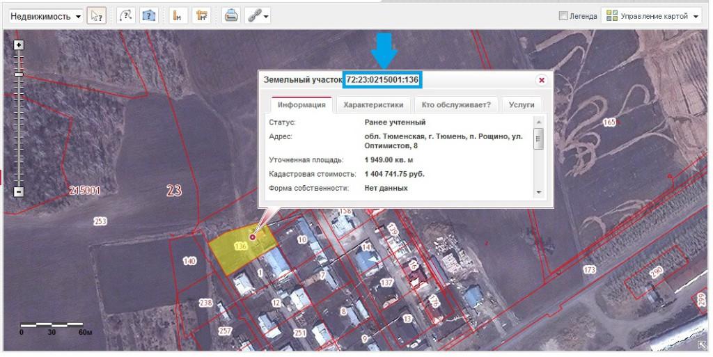 изделия, где определить стоимость земли по кадастровому номеру правила ухода